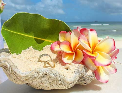 Sweet Memories - symbolische Zeremonie Seychellen